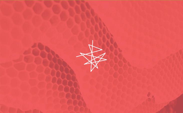 Wildhive_Branding7